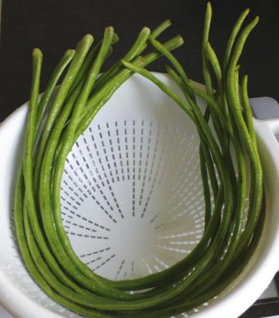 Thai long beans