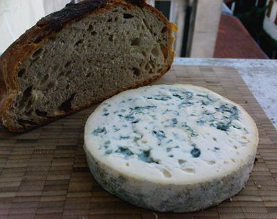 Fourme d'Ambert and homemade bread, taken outside my kitchen window.