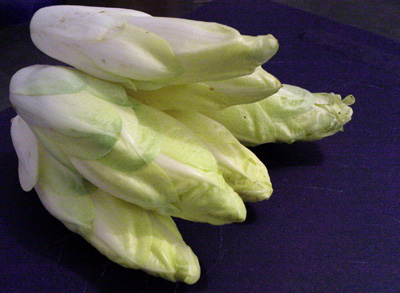 Fresh organic endives from the Loire valley